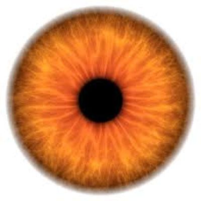 Cuidado del ojo Presbicia
